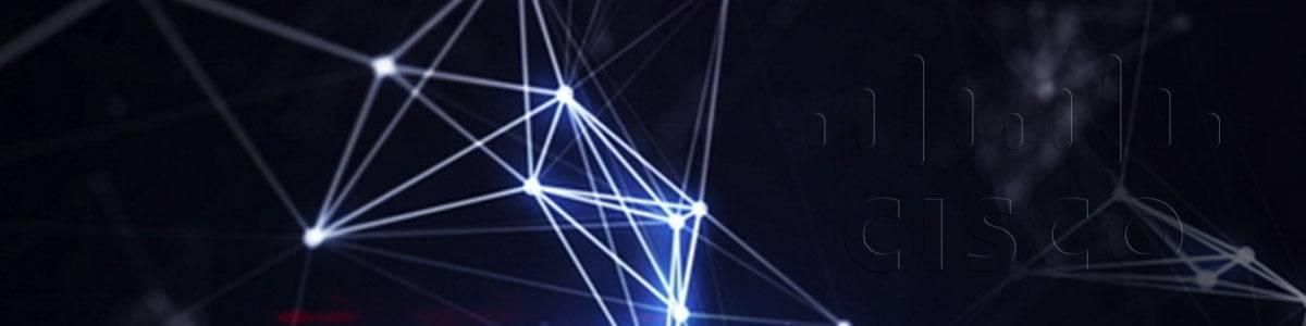 network-back-slider